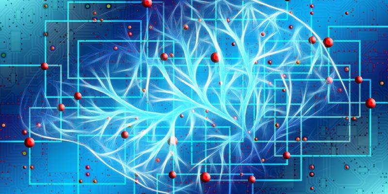 Simple øvelser til forøgelse af intelligens