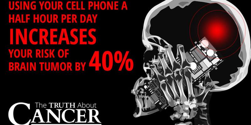 Klare beviser: Mobiltelefonstråling forårsager cancer hos hanrotter…